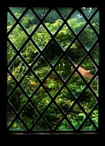 Garden-Through-Lattice-Window