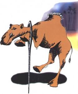 CamelNeedle-250x300.jpg